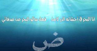 لغة الضاد أنا البحر في أحشائه الدر كامن